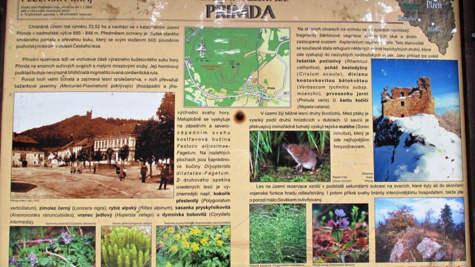Infotabule přírodní rezervace Přimda