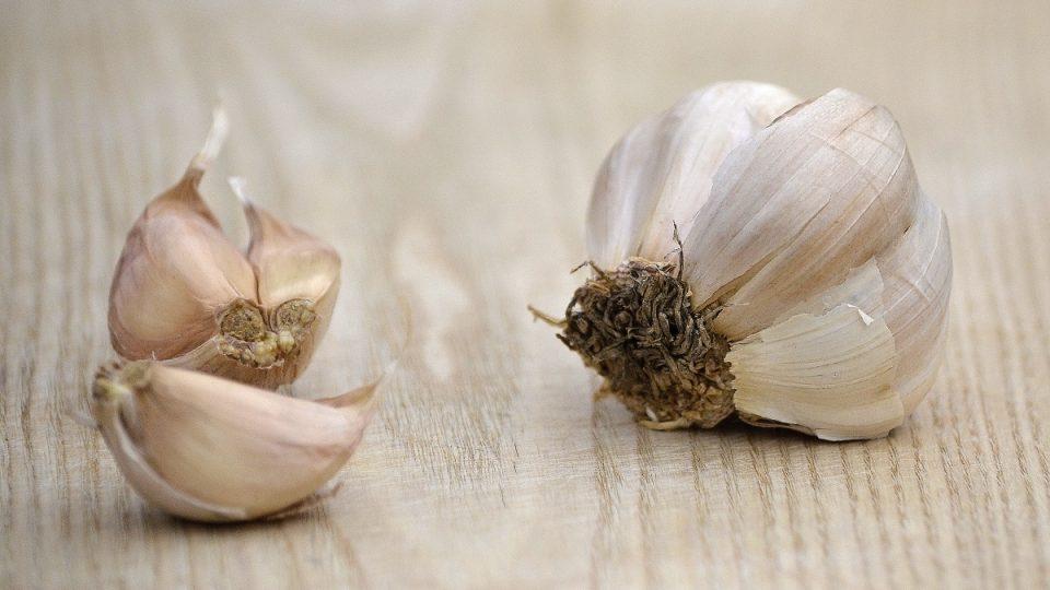 Stroužky česneku