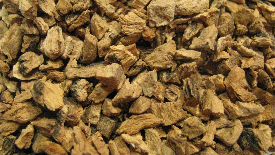 Sušený kořen hořce žlutého