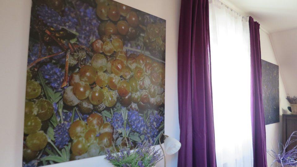 Pokoje hotelu jsou také vedené v barvách levandule