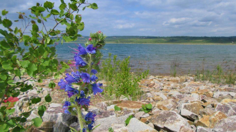 Romantika na jezeře Medard