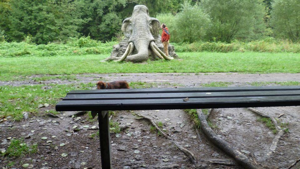 Pohled na mamuta si může každý vychutnat z lavičky