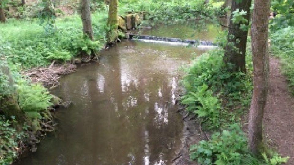 Řeka se dá přebrodit, lidé se do ní chodí rádi v horkém létě svlažit