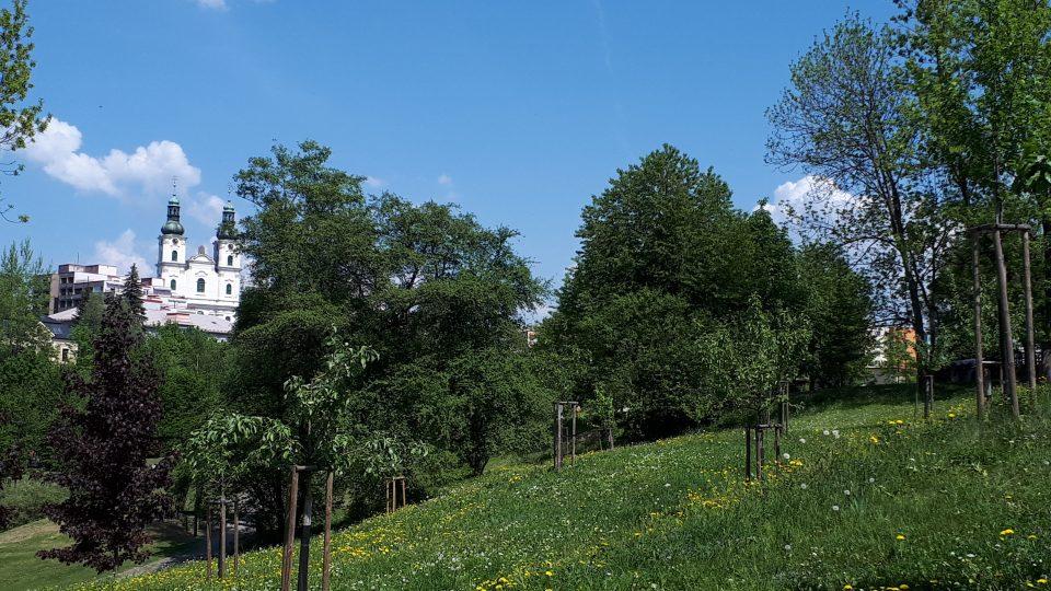 Ovocný sad volně navazuje na park pod zámkem. Přesto o něm spousta kolemjdoucích ani neví.