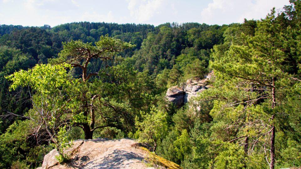 Příhrazské skály jsou přírodní rezervací