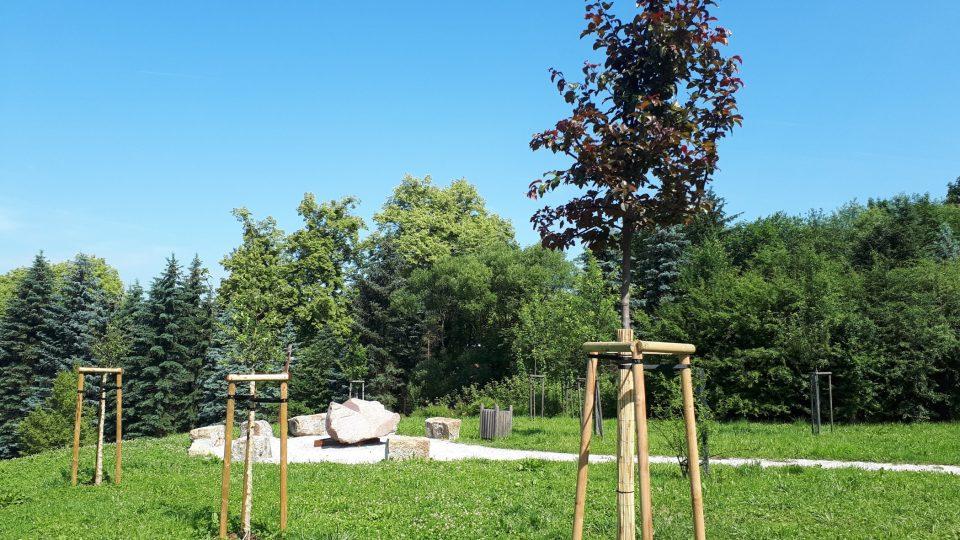 Park se postupně zaplňuje nejen kamennými sochami, ale také novými stromy.Letos zde vysadili jabloně