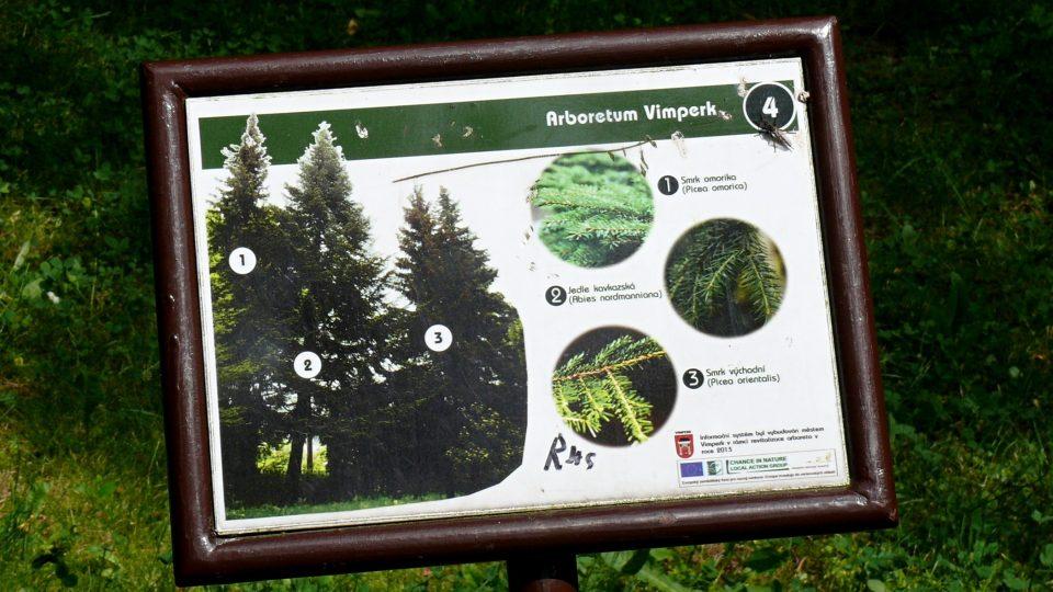 Stromy v arboretu jsou označeny popisky