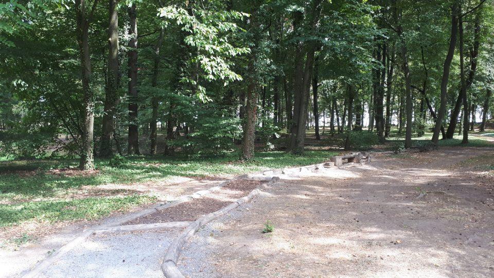 Hmatová stezka vede lesem a je točitá, takže nevidíte co vás čeká