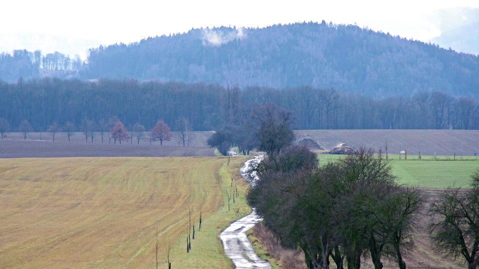 Část zvířecí stezky vedek otevřenou krajinou mezi Bludovem a Šumperkem