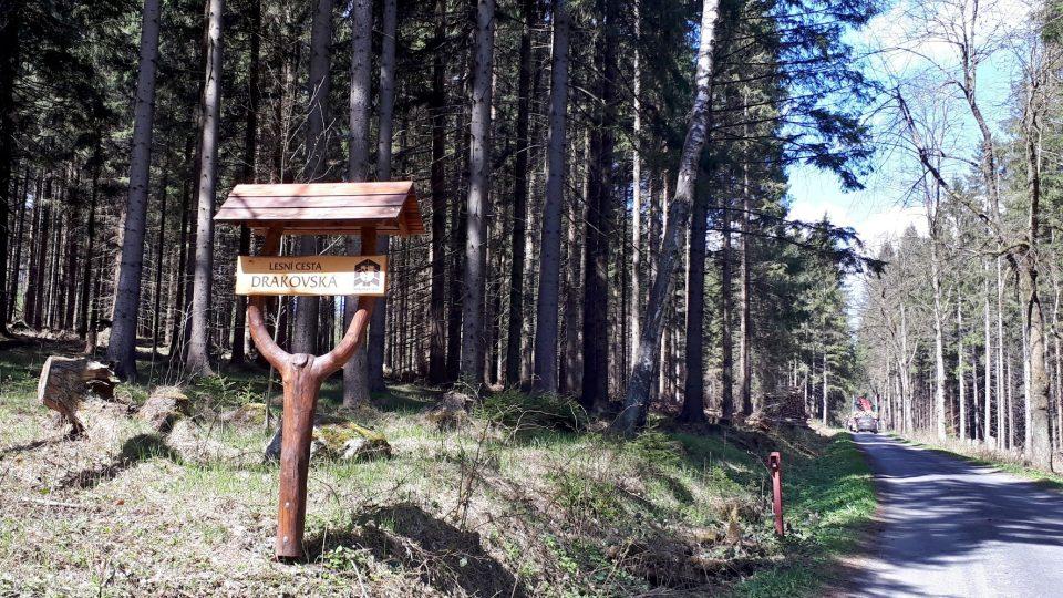 Naučná stezka vás povede po této pohodlné lesní cestě. Ideální pro kola i rodiče s kočárky.jpg