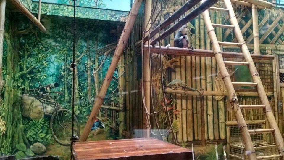 Zvířata ze ZOO Chleby se po téměř 2 měsících také těšila na návštěvníky
