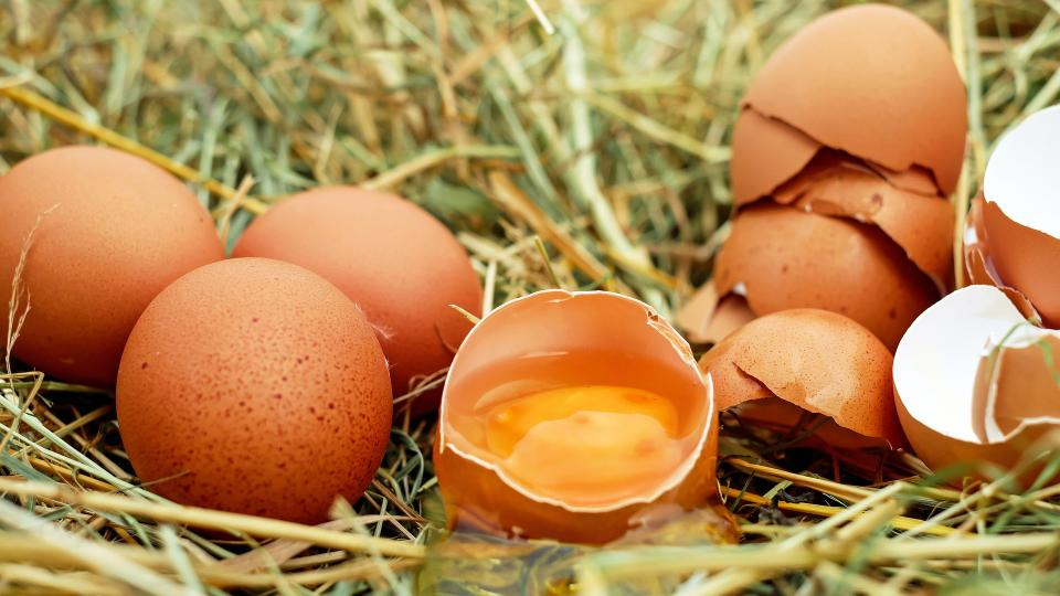 Skořápky z vajíček jsou zdrojem vápníku