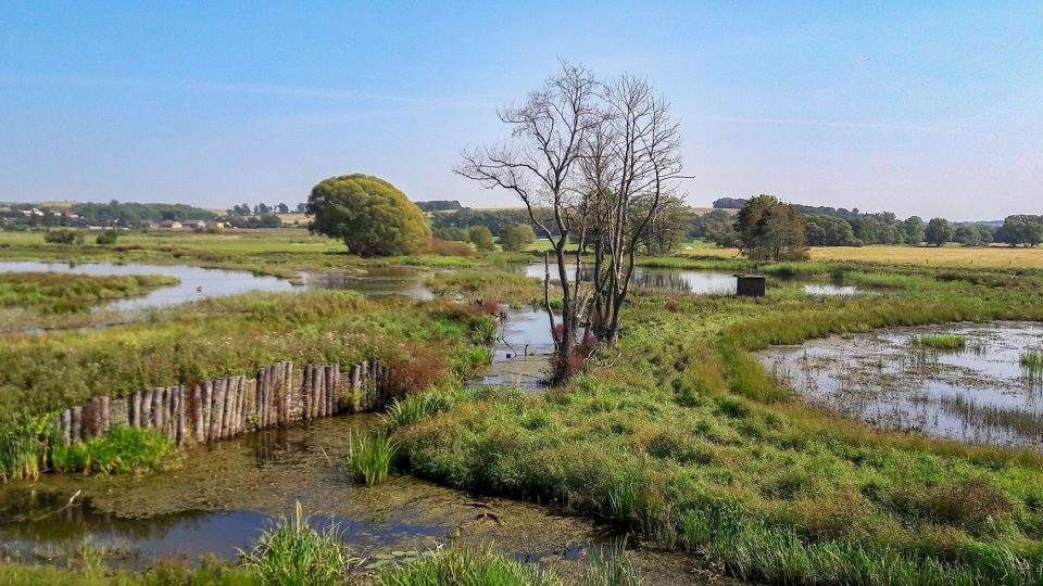 Do oblasti se díky revitalizaci a ochraně zdejší přírody opět vrací život