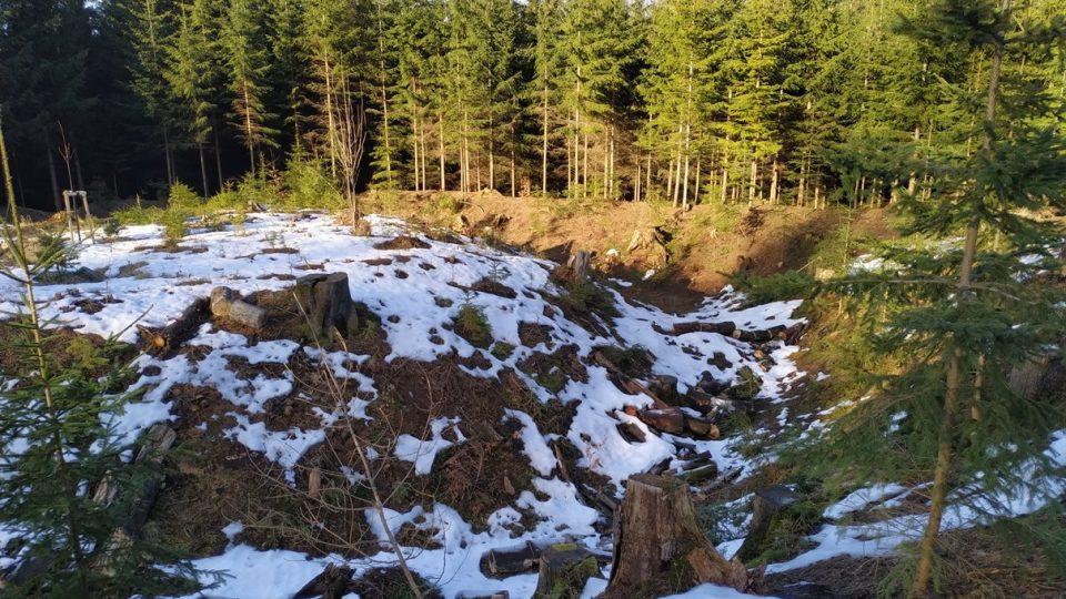Tvrziště Stoupec si uchovalo vodní příkop