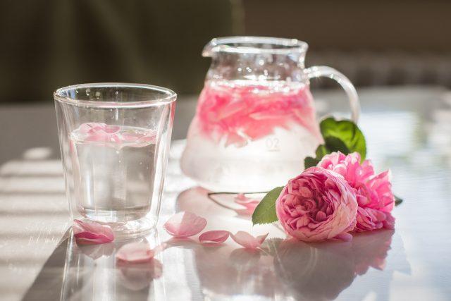 Nápoj z růže stolisté